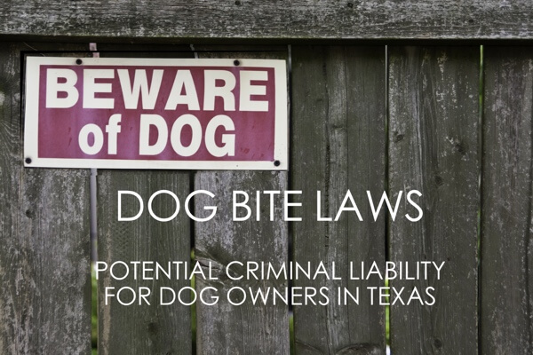 Texas Dog Bite Laws Dangerous Dog