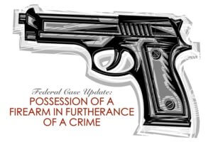 Possesion of a Firearm by a Felon
